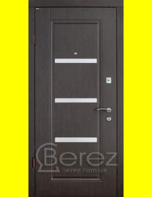 Входные двери недорого Вена (Al)