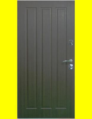 Входные двери недорого Трояна