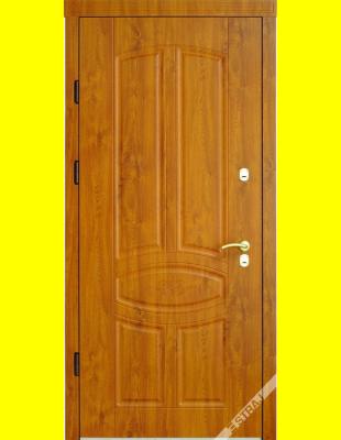 Входные двери недорого 60