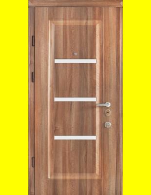 Входные двери недорого Страж Вена